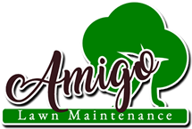 Amigo Lawn Maintenance