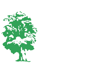 Elm Center Counseling