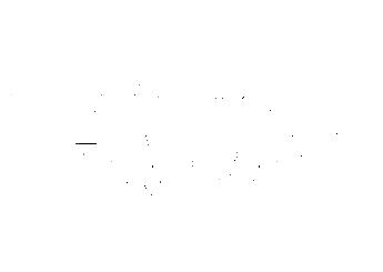 Exotic Chrome & Hydrographics