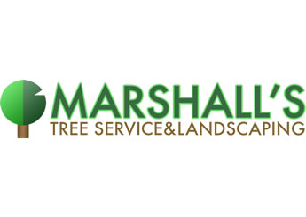 Marshall's Tree Service And Landscaping