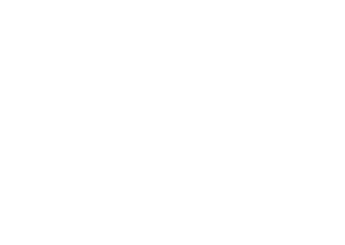 The Wheelright